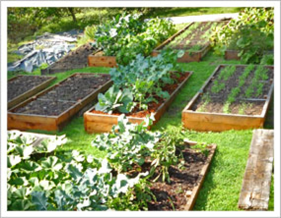 Raised garden beds greensketch concepts for Vegetable garden box layout